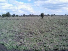 5 acres land for sale in Kiserian