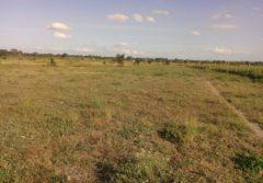 2 acres land for sale in Kitengela at Olturoto shopping centre