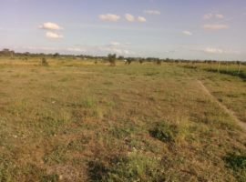 Plots for sale in Kitengela, Olturoto