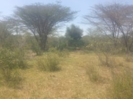 40 acres land for sale in Kiserian